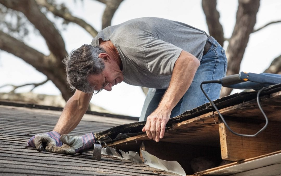 roof repairs are a great home improvement project for fall
